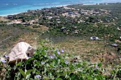 Cabo-Pulmo-Hill