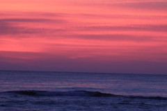 Pinkout